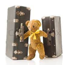 bear with bags