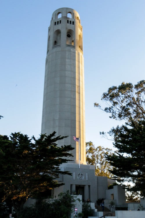 usa-california-san-francisco-coit-tower