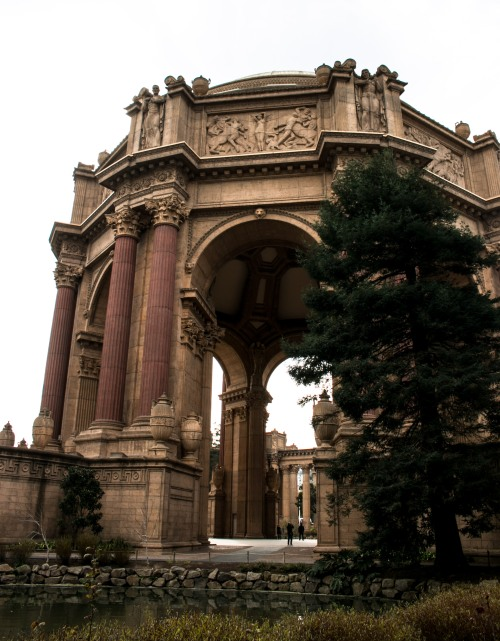 usa-california-san-francisco-palace-of-fine-arts
