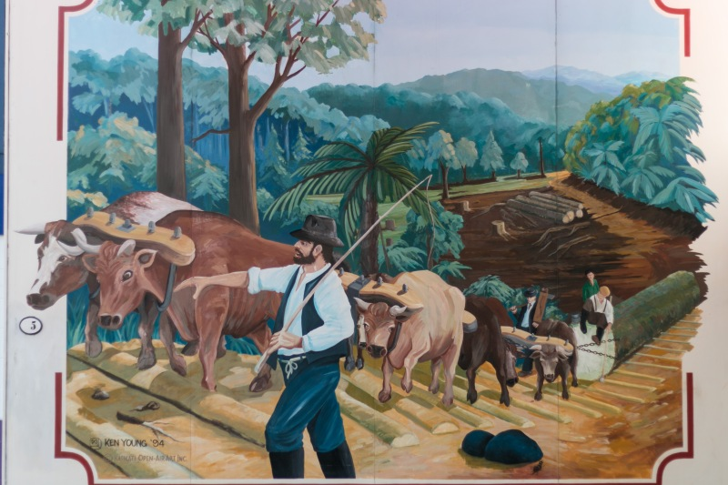 waihi-new-zealand-tauranga-maunganui-beach_murals