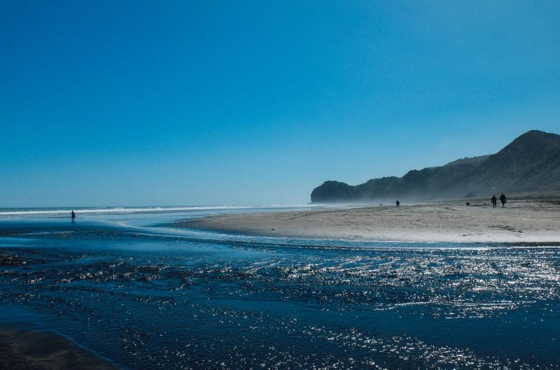 new zealand-auckland-piha-beach