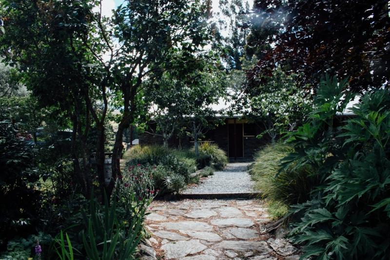 new zealand, greenery, south island