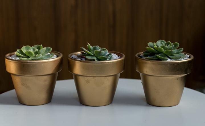 macrame-plant-hanger-succulent-bisforbear