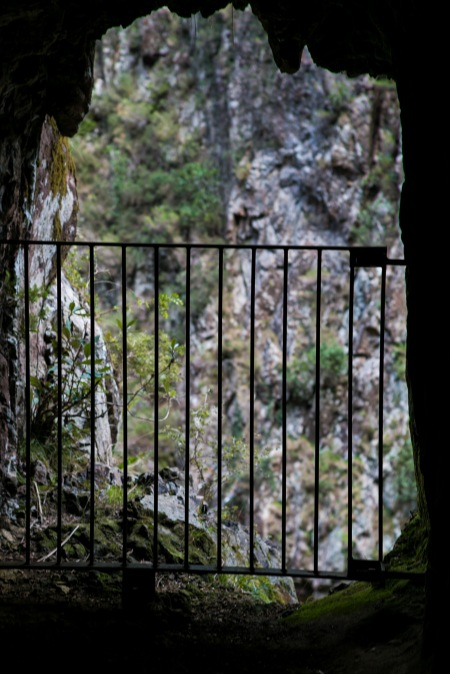 karangahake_gorge-new-zealand
